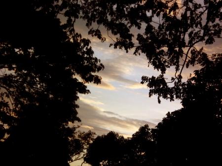 To Sunset3